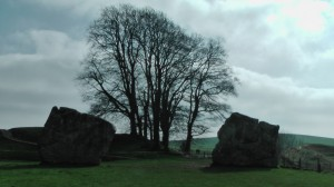 Avebury Trees South